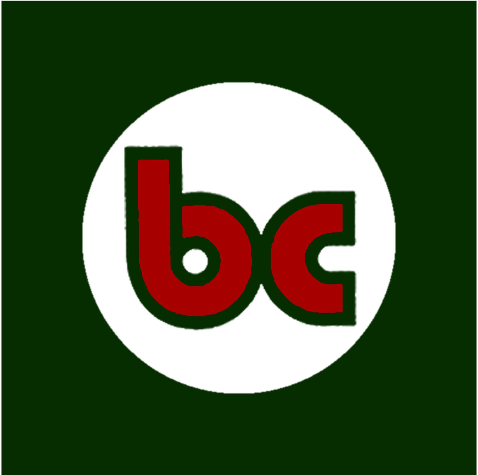 Logo circolare di bc Proposte Immobiliari, agenzia immobiliare di Ostia Lido, Roma